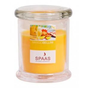 Spaas Sklo 78x93 Mango bellini víčkem vonná svíčka
